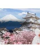 Japanske studije
